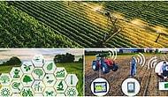Kayhan Karlı Yazio: Tarım mı? Teknoloji mi?