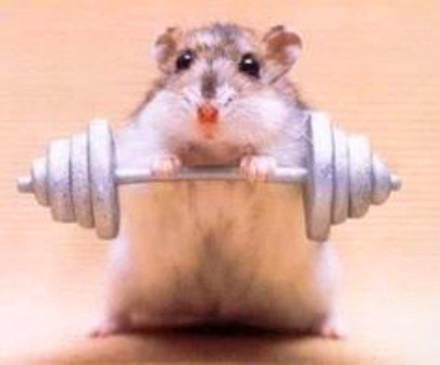Haftada en az 3-4 gün spor yapmaya çalışırım, olmazsa da aktifliğimi korurum.