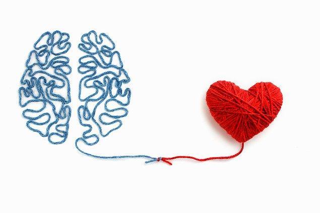 Sevgi, kalbe atfedilen bir kavramdır. Çünkü yaşam, kan pompalayan etten bir organın, vazifesinin ötesinde taşıdığı sevgi ile anlam kazanır ve yücelir.