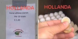 Almanya, Hollanda Bizi Kıskanıyor Diyenlere 'Parasını Bırak, Ürünü Al Git' Dükkanlarını Tanıtan Adam: 'Ahlak Bitmiş, İnsanlık Çökmüş'