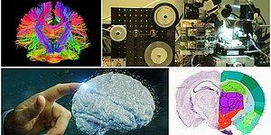 Uğur Batı Yazio: İnsan Beyninin Sırrı Çözülebilir mi?