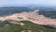 Kaz Dağları'nda Yüzbinlerce Ağacı Kesen Alamos Gold, Devletten Tazminat Alarak Sahadan Çekildi