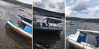İzmir'de Meydana Gelen 6,6 Büyüklüğündeki Deprem Sonrasında Deniz Tamamen Çekildi