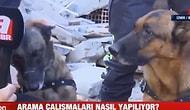 'Köpekleri Salın Ben Kedi Sesi Çıkarayım' Diyen Buse'nin Kurtarılmasında Büyük Rol Oynayan O Köpekler