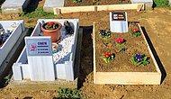 Kedisini Bir Kazada Kaybeden Vatandaş, Arazisini Hayvan Mezarlığı Yaptı