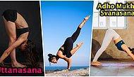 Evde Zayıflamak ve Güne Daha Zinde Başlamak için Öğrenmeniz Gereken 10 Temel Yoga Pozu