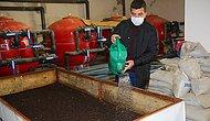 Günde 1 Saat Çalışarak Ayda 3 Ton Solucan Gübresi Üretiyor