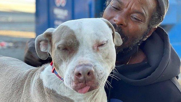 Hamlin, Walker'ı önceden tanıyordu. 13 yaşından beri sokakta yaşayan Walker'ın Bravo adındaki pitbull cinsi köpeğinin her gece sığınakta kalmasına izin vermişti.