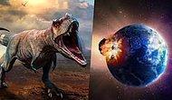 Çok Uzaklardan Gelen Bir Göktaşının Dünyaya Çarpması Sonucu Dinozorlar Nasıl Yok Oldu?