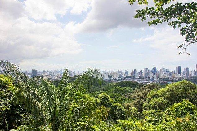 13. Panama, içinde yağmur ormanları bulunan tek başkenttir.