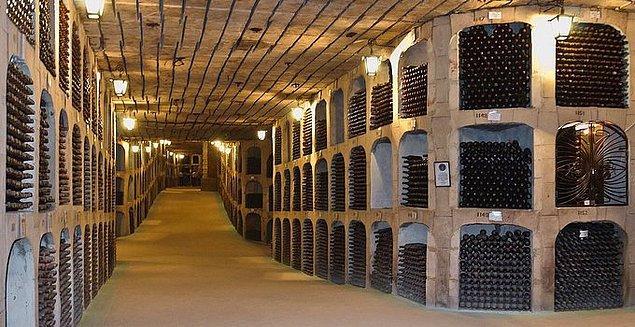 20. Guinness'e göre dünyanın en büyük şarap koleksiyonu Moldova'da bulunur. İçinde 1 milyondan fazla şişe vardır.
