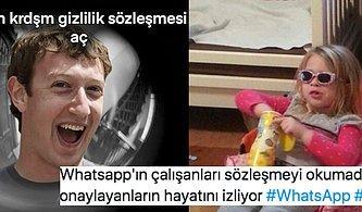 WhatsApp'ın Yeni Gizlilik Sözleşmesi Karşısında Far Görmüş Kediye Dönen Kullanıcılardan Güldüren Paylaşımlar
