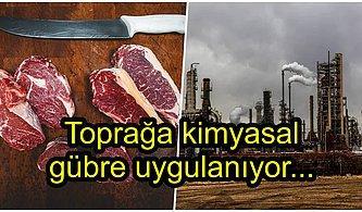 Et Tüketmek Çevremiz İçin Neden Zararlıdır?
