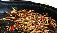 Un Kurdu Sofralara Geliyor! AB'de Böcekli Yiyeceklere Yeşil Işık