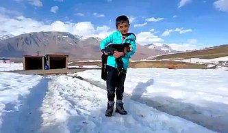 Tunceli'de Yaşayan Küçük Mahir'den Hayvanlara Sevgi Saati: '24 Saat Seviyoruz, Yoksa Küsüyorlar'