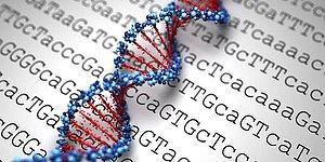 Dedikodular Üzerine Test Yaptılar: Babanın İki Farklı DNA'ya Sahip Olduğu Ortaya Çıktı