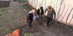Bahçesine Giren Komşusunun Köpeğini Sopayla Vurarak Öldürdü