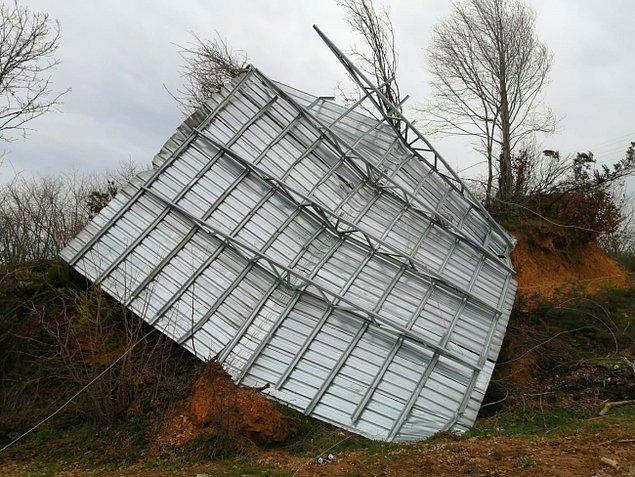Şiddetli rüzgar nedeniyle mahallede bazı ağaçlar da hasar gördü
