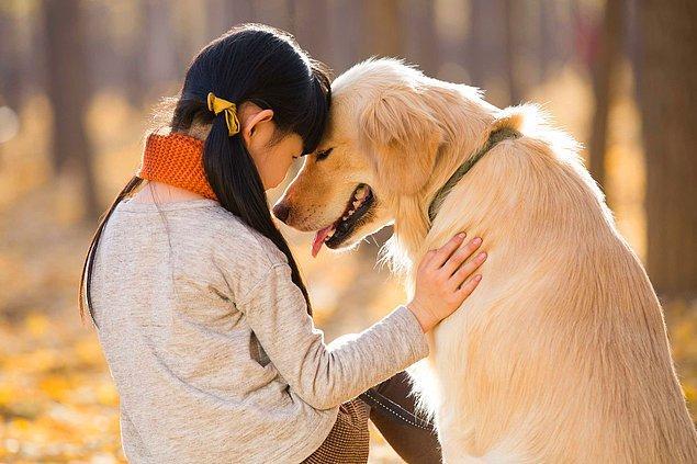 """""""Köpeklerin Sibirya'da bir yerlerde bulunmuş olmaları gerektiğini biliyoruz"""""""