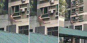 Birlikte Olduğu Kadının Eşi Eve Gelince, Yatak Odasının Penceresinden Çıplak Bir Şekilde Atlayarak Kaçan Adam