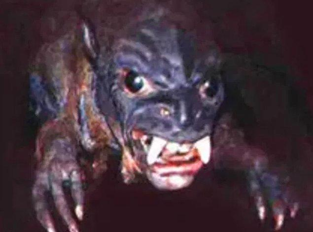 Bölge halkı 'Chupacabra' adlı yaratıktan şüpheleniyor