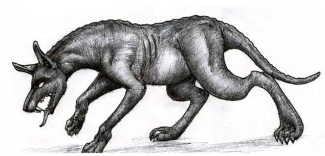 Chupacabra, 90'larda bir dizi hayvanın gizemli şekilde ölümüyle de gündeme gelmişti