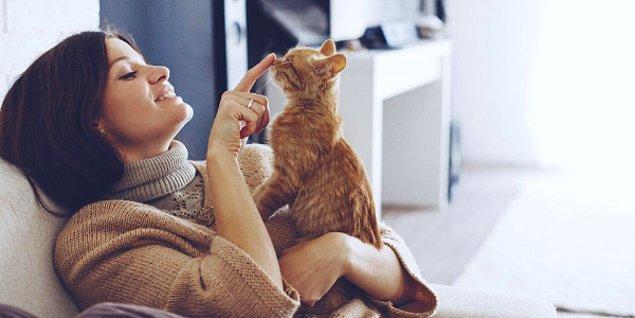 21. Bu da evinde benim gibi kedi besleyenlere gelsin! Evde kedi kokusuna artık elveda diyebiliriz...