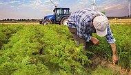 Traktörüne Haciz Gelen Çiftçi Kalp Krizi Geçirerek Hayatını Kaybetti...