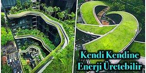 Tüm Malzemeleri Çevre Dostu Olacak Şekilde Seçilen İnsan Sağlığına Faydalı Yapı Sanatı: Yeşil Mimari
