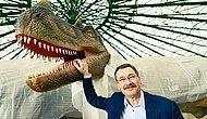 Gökçek'e Ankapark ve Dinozor Sevdası Soruldu: '450 Milyon Dolara Mal Oldu; Bu Çok Para mı?'