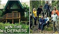 Aytül Yükselici Yazio: Win The Wilderness