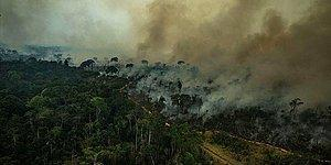 Yerlilerin Yaşadığı Alanlar Tehlike Altında: Amazon Ormanları Facebook Üzerinden Satışa Çıktı