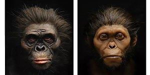 En Eski Atalarımızdan Taung Çocuğu ve Lucy'nin Yapılmış En Gerçekçi Yüzlerini Görebildik!