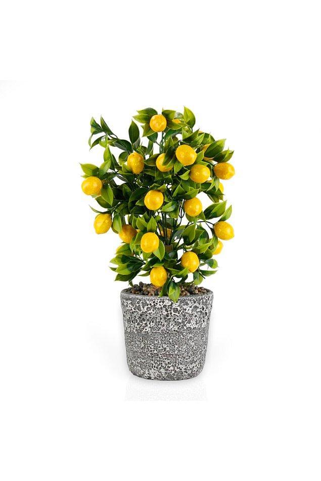 17. Bu yapay limon ağacı da bu nevresim takımı ile çok yakışacaktır.