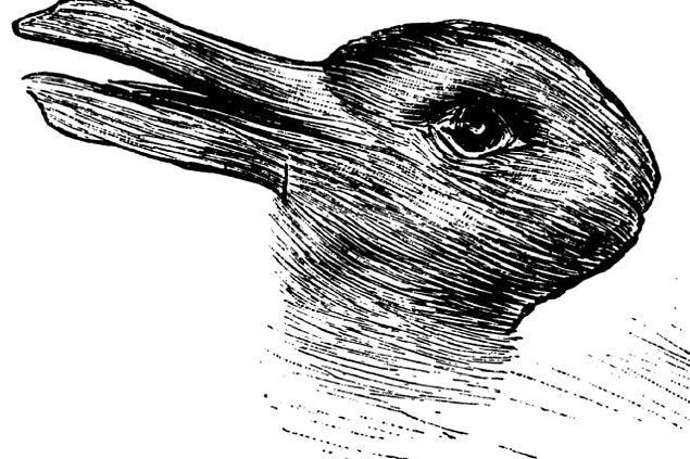 8. Ördek mi tavşan mı?