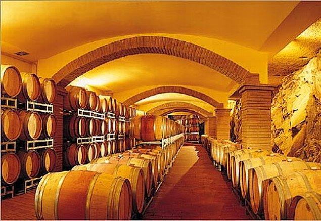 11. Moldova'daki evlerin çoğunda şarap mahzeni var.