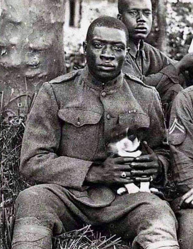 11. Harlem Hellfighters (369. Piyade Alayı), 1. Dünya Savaşı sırasında Amerikan tarihinin en ölümcül askeri harekatı olan Meuse-Argonne Taarruzu'nda 191 gün boyunca ön cephelerin siperlerinde savaşan ve tamamen siyahi askerlerden oluşan bir piyade alayıydı.