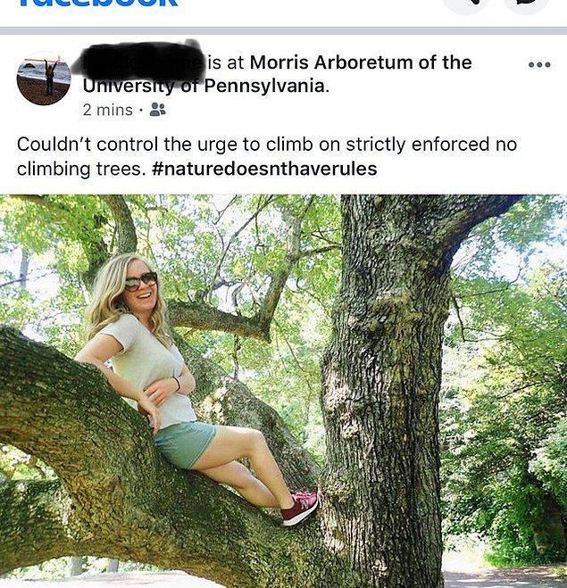 15. Tırmanılması yasaklanmış ağaçlara tırmanıp üzerinde gülerek poz veren