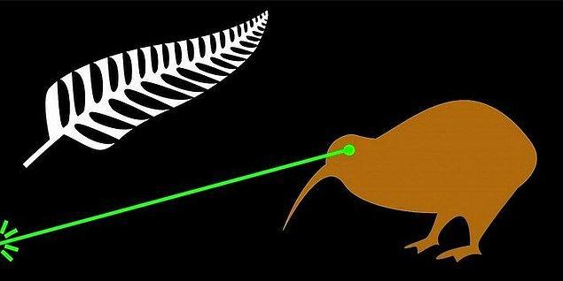 1. 2015-2016 yılları arasında Yeni Zelanda'da ülkeye yeni bir bayrak seçmek için yapılan referandumlarda en yüksek oyu alan tasarımlardan biri gözlerinden lazer ışını çıkan bir kivi kuşunun olduğu tasarımdı.