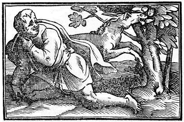 9. Yunan filozof Hrisippos, sarhoş bir eşeğin çürümüş incirleri yemesine aşırı derecede gülmesi sonucunda gülmekten ölmüştür.