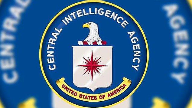 Buna karşılık CIA, devlete bağlı resmi bir kurum olmamasına rağmen devlet ile eş güdümlü olarak çalışan bir sivil toplum örgütüdür.