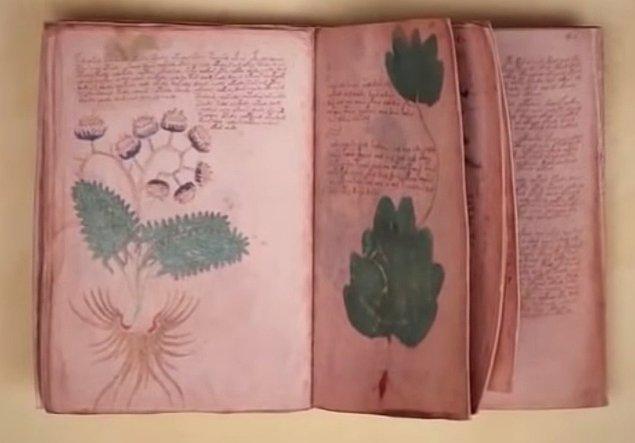 Sizi 100 yıldan fazladır bilim insanlarının üzerinde çalışmasına rağmen hala sırrı çözülememiş Voynich El Yazması'yla tanıştıralım.