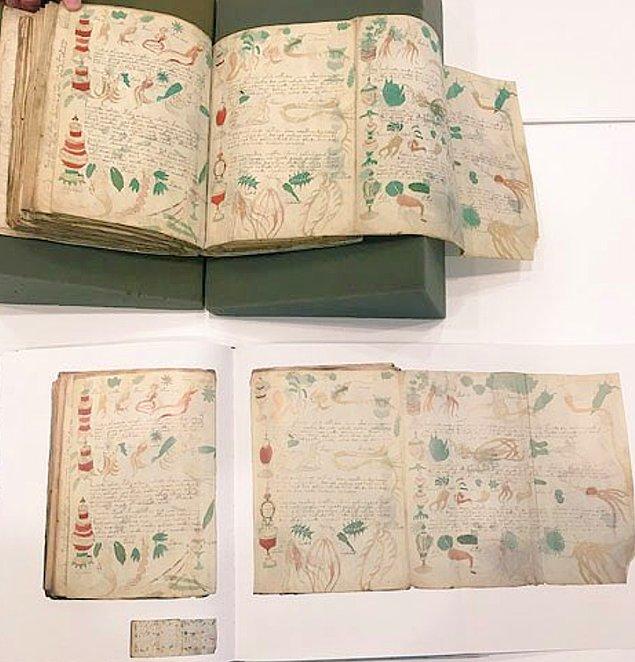 Birçok insan kitabın sahte olduğunu Wilfrid'in şaka yaptığını düşüyor ama yapılan karbon testleri sonucunda bu yazmanın 15. yüzyılda kaleme alındığı ortaya çıkıyor.