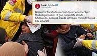 8 Yaşındaki Çocuk Kafasından Isırıldı, Belediyenin 'Minik Dostumuz' Tweeti Tepkilere Neden Oldu