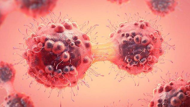 Çoğu zaman direkt olmasa da düzenli devam ediyorsa aşağıdaki belirtiler kanserle bağlantılı olabiliyor;