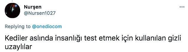 13. 👇