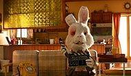 Şule Arslan Yazio: Tavşan Ralph'in Empatlara İhtiyacı Var!