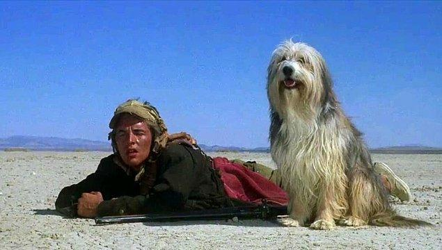 13. A Boy and His Dog (1975)