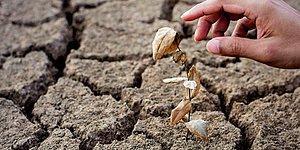 2020 Yine Bildiğiniz Gibi: Şimdiye Kadarki En Sıcak 3 Yıldan Biri Oldu