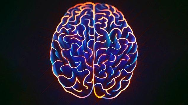 2. Uyku anında beynimizde neler oluyor?